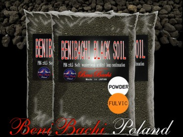 BlackSoilPowderFulvic.jpg